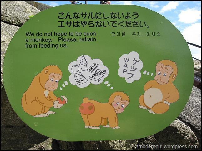Miyajima Monkey Tip #1