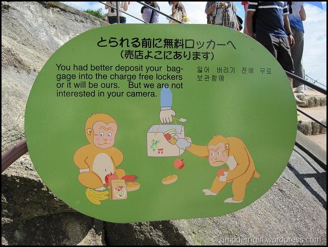 Miyajima Monkey Tip #2
